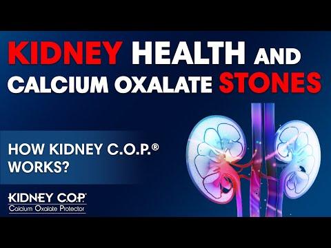 Dr. Matthew Davis, MD & Pharmacist - How Kidney C.O.P. Works