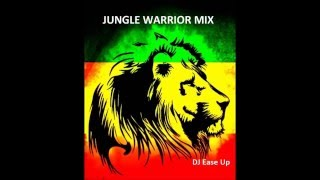 Jungle Warrior -Drum and Bass Reggae Mix *Free Download*