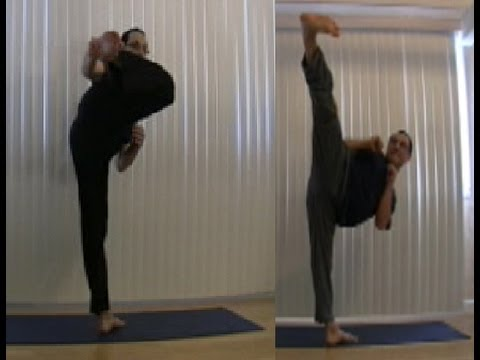 Martial Arts Side Kick Lat Recruitment Arm Position Side Kick
