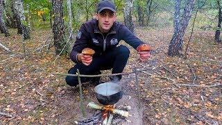 Поход по грибы.Шашлык рулет из грибов