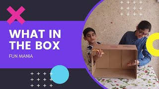 WHAT&#39S IN THE BOX CHALLENGE  sis vs bro challenges lock down games