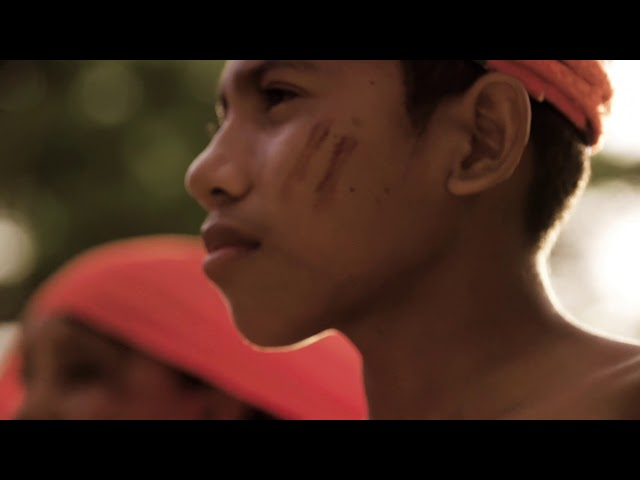 THE BIRDERS  | TRAILER - A Melodic Journey through Northern Colombia