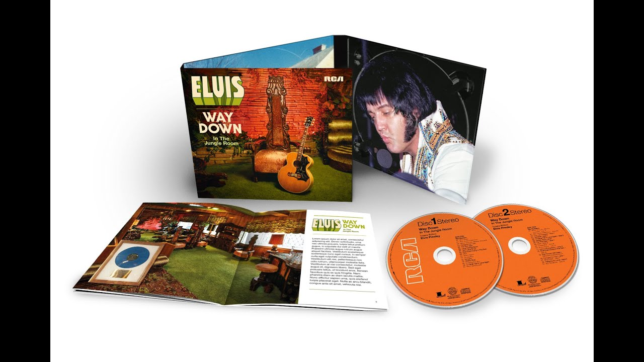Image result for elvis way down in the jungle room