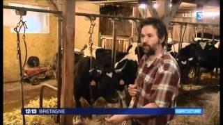Vincent Thébault, éleveur de Bretonne Pie Noir - 12/13h France 3 Bretagne - 21 février 2014
