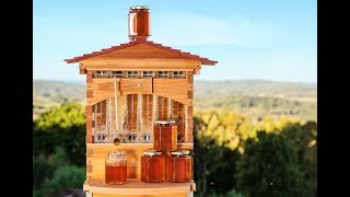 Flow™ Hive(フローハイブ)とは