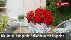 DIY Ampel | Hängende Balkondeko mit Begonien | hanging basket with begonias | BLOOM's Floristik