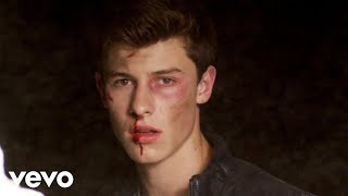 shawn mendes stitches official video