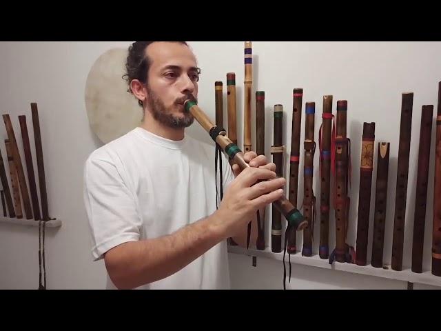 Flauta Nativa River Cane C 440