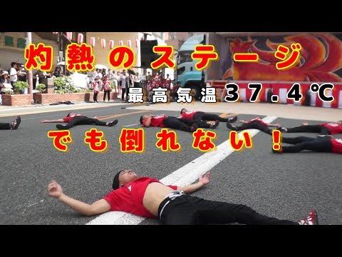 スタジオMJ with 九州男児新鮮組 第48回水の祭典 久留米まつり 六ツ門南会場