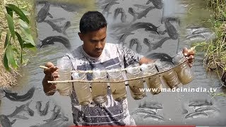 Believe This Fishing   Unique Fish Trapping Method   New Technique Of Catching Country Fish