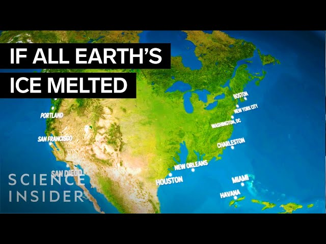 This Animation Shows What Earth Would Look Like If All The Ice Melted - Map reveals what the earth would look like if all the polar ice melted 2