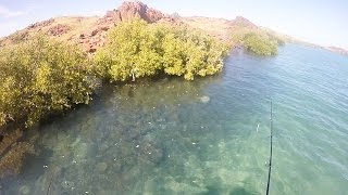 Dampier - Clear Water Casting