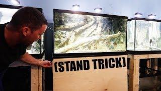 A little DIY aquarium stand trick of mine