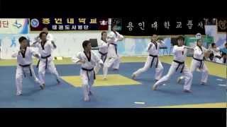 Team-M Taekwondo: Journey to Hanmadang 2012 (Part 2)