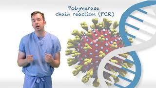 Antibody testing for COVID-19 ?