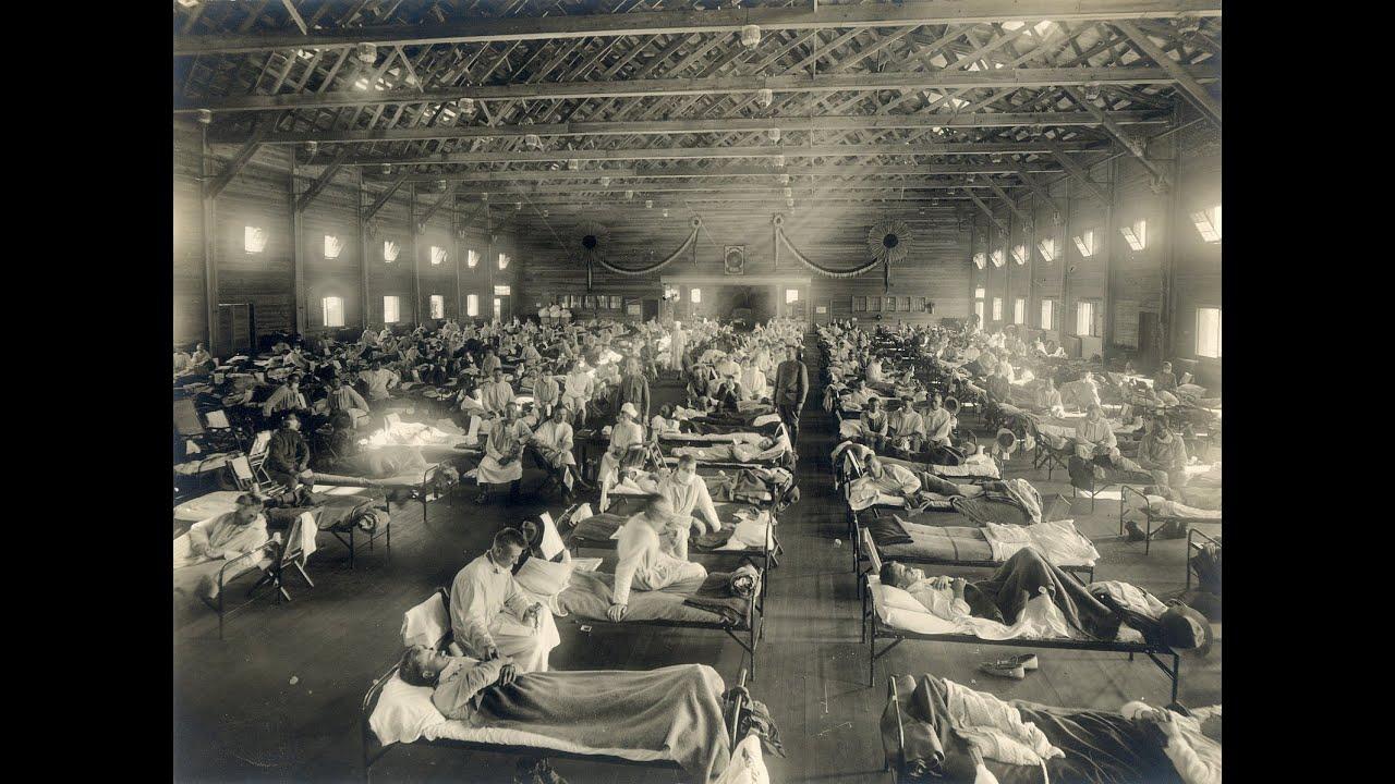 World War Flu