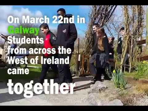 Teenager Climate Change Forum Ireland