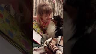 Я учу свою собаку Зорро читать.