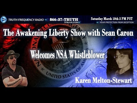 TARGETED INDIVIDUALS, GANG STALKING AND THE NSA WITH KAREN STEWART