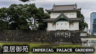 皇居御苑 Imperial Palace Gardens, Tokyo [360°VR]