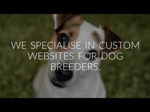 Wappsow Dog Breeders Websites