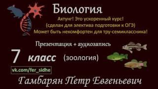 5. Тип Круглые черви (экспресс Зоология) подготовка к ОГЭ и ЕГЭ Биология