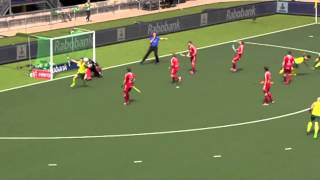 Rabobank mens Hockey World Cup 2014 - The Hague - Goal compilation - RHWC