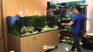 bei Tier daheim - 13.05.2015 - Aquarien