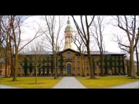 university of princeton   963939