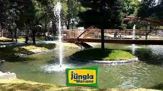 Un vistazo al nuevo Parque Juárez LIVE VIDEO
