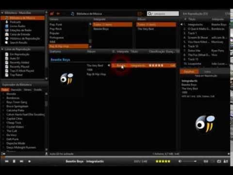 Musicbee - Visualizador