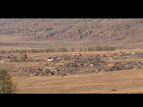 Уроки родиноведения: Тюменские ковры
