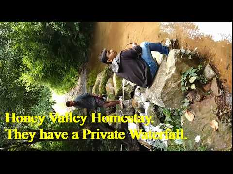 Bangalore to Coorg road trip, Honey Valley Homestay.