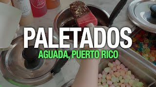 Paletados, Heladería Artesanal, Aguada, Puerto Rico