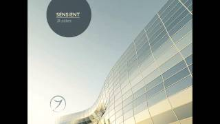 Sensient-Running With Scissors