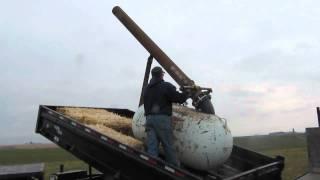 Air Powered Pumpkin Cannon Launcher