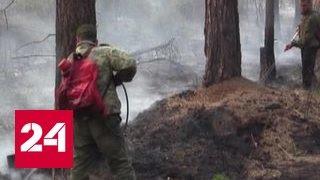 В пяти регионах России из-за пожаров введен режим ЧС