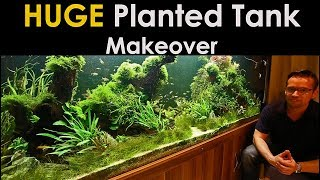 HUGE Planted Tank Makeover - 1200 Litre Nature Aquarium!!
