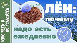 Семена льна для здоровья и похудения Сколько есть как заваривать и чем они Вам помогут