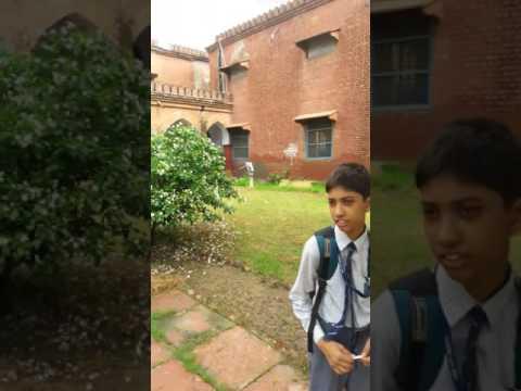 Amu city high school aligarh