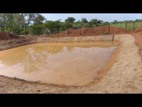 Du Bassin De Collecte Au Bassin De Conservation Des Eaux De Ruissellement