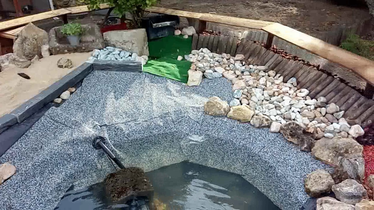 Bassin pour tortue youtube for Bache pour bassin 5x5