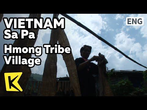【K】Vietnam Travel-Sa Pa[베트남 여행-사파]고산지대 소수민족, 흐몽족 마을/Hmong Tribe Village/Trekking/Route 6