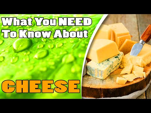 AZ WHOLEistic and CBD Studio - What you need to know about cheese