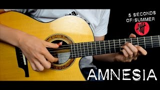 Amnesia - 5 Seconds of Summer (5SOS) (Solo Acoustic Guitar Cover) Eddie van der Meer