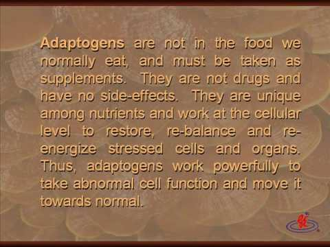 Ganoderma Lucidum - Power Food of the Ages PART 3