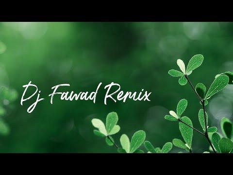 Ahamad Zahir Aye Bul Bul E Khush Elhan Remix DJ Fawad دی جی فواد