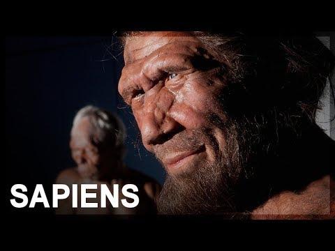 Review: Sapiens by Yuval Noah Harari
