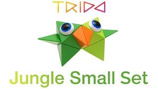 Trido Jungle Small Set - How to build a Bird