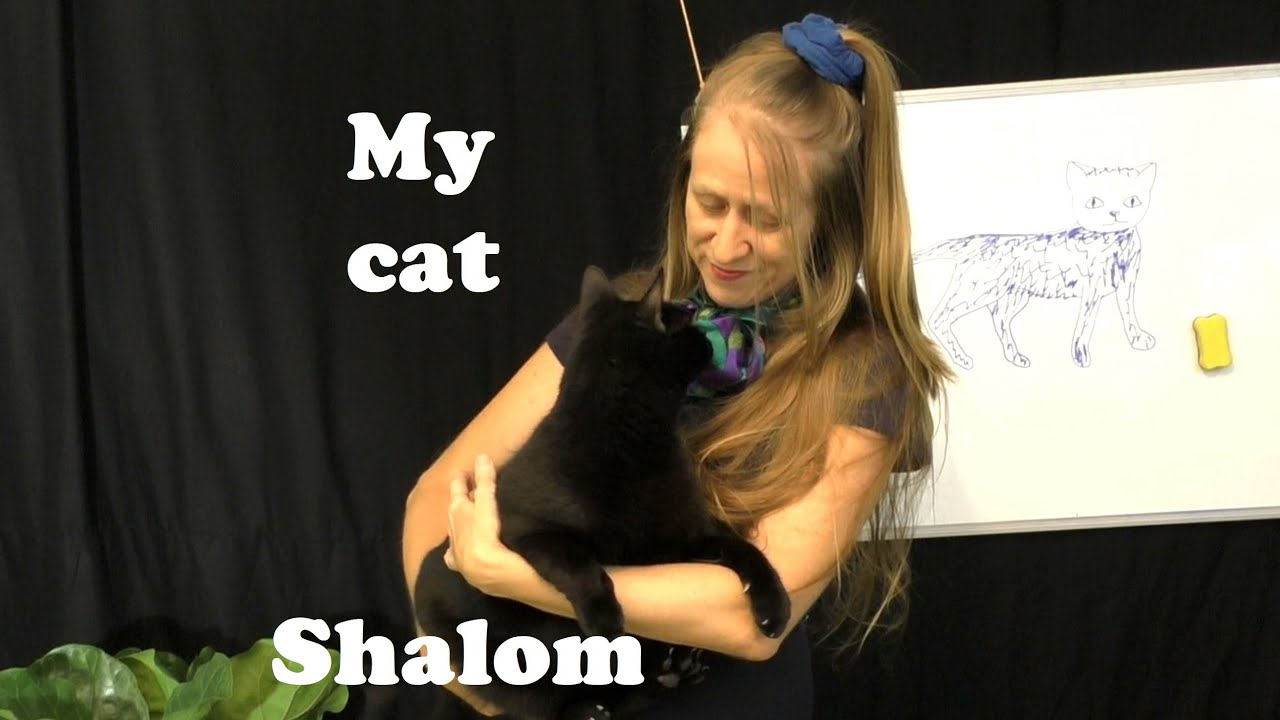 My Beautiful Cat Called Shalom